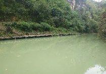 南山河钓场