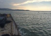 诏安湾海钓