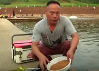 《东北渔事》辽宁众信黑黄金抢鱼套餐助力黑坑上岸第二集