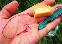 使用中藥類魚餌釣魚時的核心技巧(下)