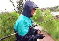 《三本先生》传统钓第99期 河道水草处选点垂钓鲫鱼(上)