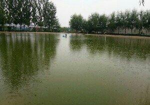 蜻蜓村钓鱼池