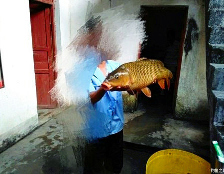 传统钓的小收获 蚯蚓饵料钓鲶鱼