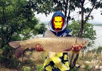 初秋钓草鱼,你需要懂得这些技巧。