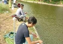 陈有鱼垂钓园