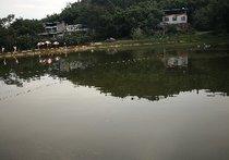 张文安生态钓鱼场