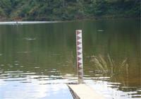 野钓大鱼该如何避开杂鱼的干扰呢?