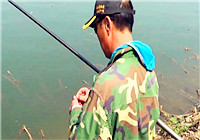 《三本先生》傳統釣第104期 水底雜物較多 鉤餌離底懸逗