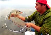 《闖江湖王澤岐》第11集 大渝水庫探釣連竿上鯉魚
