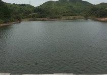 灵谷峰垂钓基地