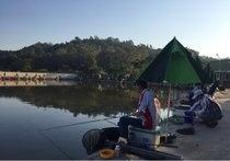 金目钓鱼场