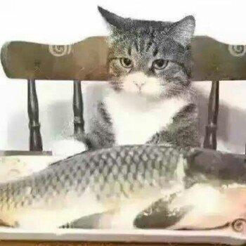 哎鱼儿不咬钩