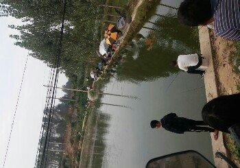 马堤钓鱼园