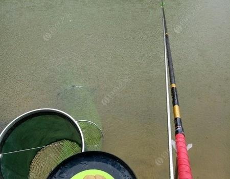 风里雨里,鱼在等你,你呢? 天元饵料钓鲢鳙鱼