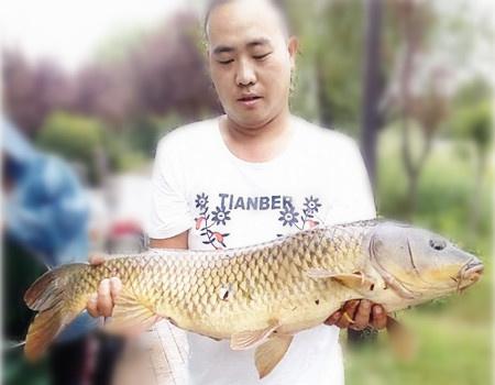 中秋佳节过,钓鱼继续搞 钓鱼之家饵料钓青鱼