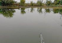 蔡湖渔家乐