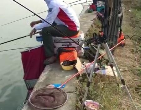 野戰陽澄湖首釣 自制餌料釣鰱鳙魚