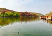 香山生态园钓场