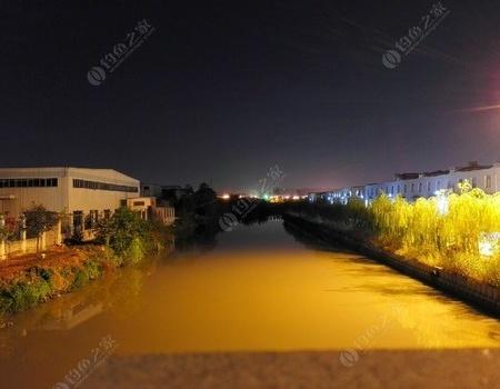 单钩夜战台州永宁河 钓鱼之家饵料钓鲤鱼