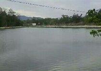 生水塘钓场