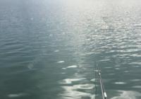 江河作釣制勝的四個要領