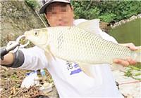 入冬后野钓鲮鱼的一些long8.vip网页版