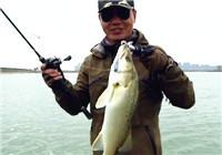 《蓝旗鱼小汐路亚视频》 冬季搜底策略 围河跳七星鲈