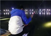 《陪着地瓜去钓鱼》20171005 北京平谷腾飞菜鸟小强钓鲫鱼(中)