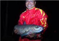 《渔道中国》83期 四旬老汉聊发少年狂 手竿打破个人记录