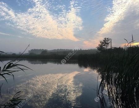 盛夏人工造鱼道,初冬传统钓收获。