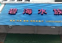 碧海水族渔具店