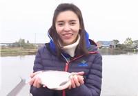《江湖行》20171213 游钓无锡猎乌鲫