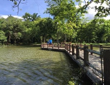 海南瓊海垂釣最舒服的地方,傳統釣,沙鱧魚,刀鰍魚
