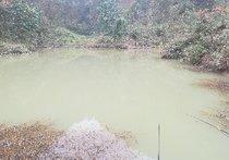 观音滩鱼塘