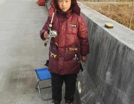 冬釣淺水鯽……全家總動員 自制餌料釣鯽魚