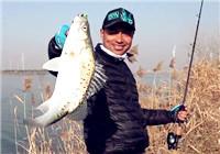 《蓝旗鱼小汐路亚视频》 深冬盐城河道搜鲈
