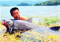 《游钓中国》第二季32集 湖北蔡贤水库钓鱼 大毛手竿力拔大乌青