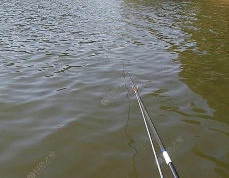 今天下午再战水声水库 钓鱼之家饵料钓马口鱼