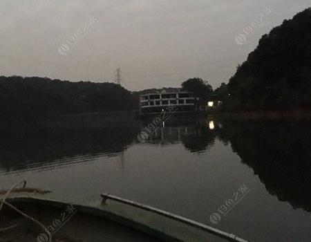 补发周日茶山湖鲮鱼之约