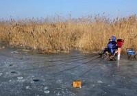 你不可不知的冬季釣鯽魚技巧