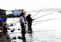 江河钓鱼选择钓位技巧分享