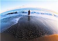 海钓与矶钓正确的抛竿技巧解析