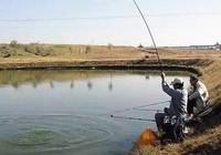 釣友教你找魚窩,釣大鯽魚回家煲湯