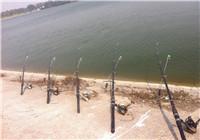 分享春季抛竿钓使用海竿的正确要领