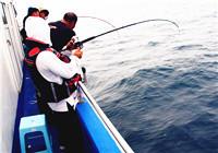 海矶钓最常使用的八种垂钓技巧