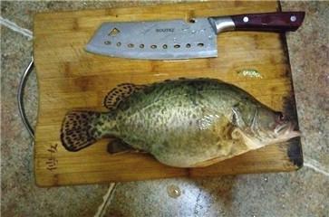 草湖垂钓日记 渔获不在多少只顾心情