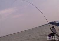 你每次揚竿都能中魚嗎?這3種揚竿方式助你爆護!