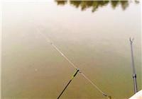 自身澳门网上娱乐钓鱼人教你野钓该如何调漂