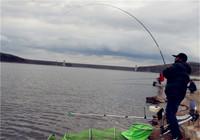 遇到大魚拔河就發慌?下次學會這樣遛魚,上大魚的釣友還是你!