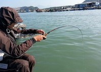 冬天傳統釣大鯽魚不靈怎么辦?試試筏釣大板鯽,一招爆護!